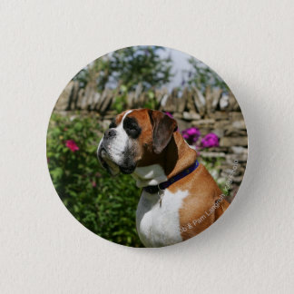 Boxer Dog in the Flowers 6 Cm Round Badge