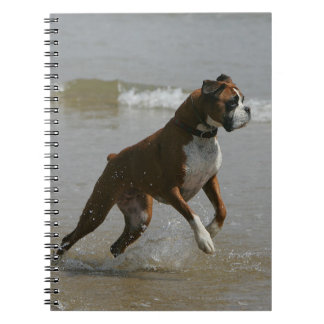 Boxer Dog in Water Spiral Note Books