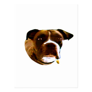 Boxer Dog The MUSEUM Zazzle Gifts Post Card