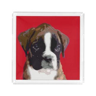 Boxer puppy dog