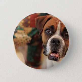 boxer's face weeping of friendly behavior 6 cm round badge