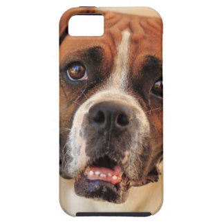 boxer's face weeping of friendly behavior iPhone 5 covers