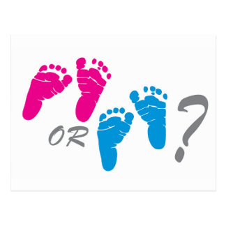 boy or girl? gender reveal party postcard