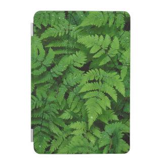 Bracken fern with rain drops, Washington State iPad Mini Cover