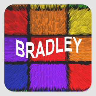 BRADLEY ( male names ) Square Sticker