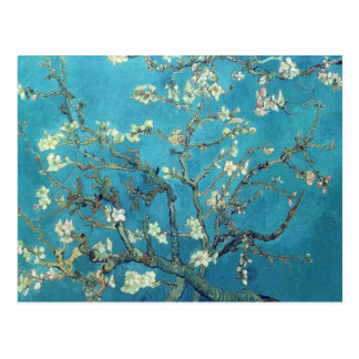 Branches with Almond Blossom  - Van Gogh Postcard