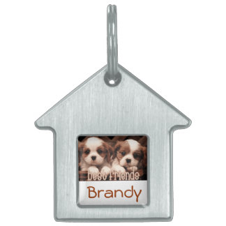 Brandy Dog Tag