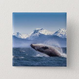 Breaching Humpback Whale In Alaska 15 Cm Square Badge