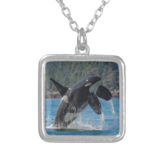 Breaching Orca Silver Plated Necklace