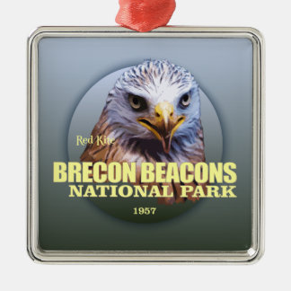 Brecon Beacons NP (Red Kite) WT Silver-Colored Square Decoration