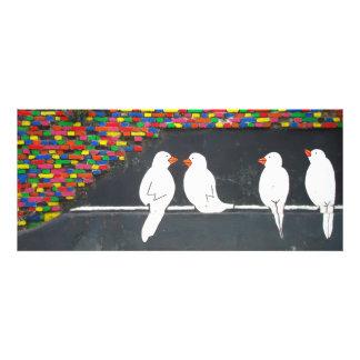 brick bird wall graffiti wall custom announcement