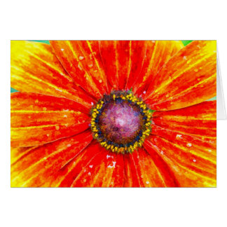 Bright and Cheerful Daisy Greeting Card