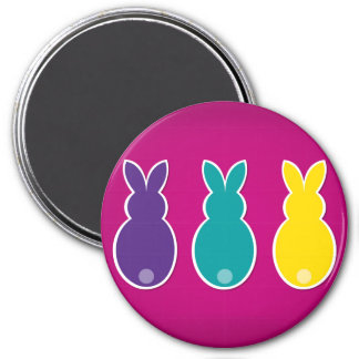 Bright Easter Bunny Silhouette Magnet