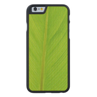 bright green fresh leaf carved maple iPhone 6 case