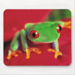 Bright Green Frog Mouse Mat