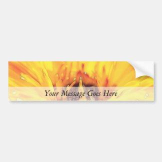 Bright Orange Calendula Blossom Bumper Sticker