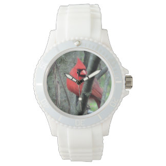 Bright Red Cardinal Watch