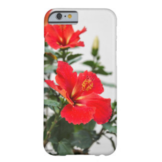 Bright red-orange hibiscus decorative iPhone cover Barely There iPhone 6 Case
