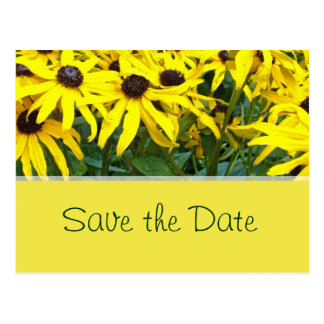 bright yellow summer daisy flowers save the date postcard
