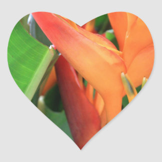 Brilliant Tropical Heliconia Florals Heart Sticker