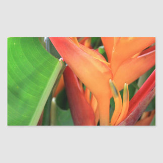Brilliant Tropical Heliconia Florals Rectangular Sticker
