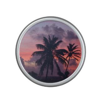 Brilliant Tropical Sunset Speaker