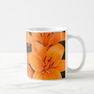 British Columbia flowers Coffee Mug