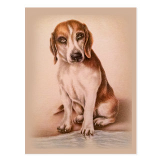 Brown Beagle drawing of cute pet portrait dog Postcard