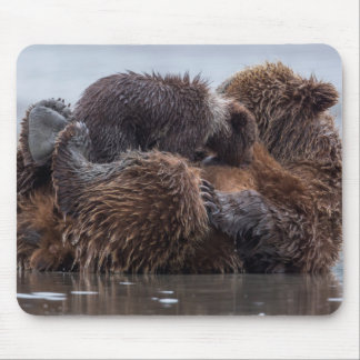 Brown bear and cubs 2 mouse pad