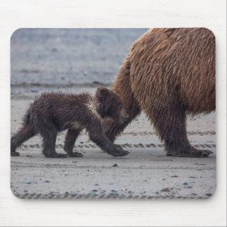 Brown Bear cub Mouse Pad