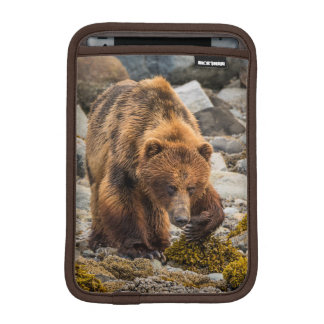 Brown bear on beach 3 iPad mini sleeves