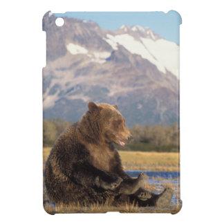 brown bear, Ursus arctos, grizzly bear, Ursus 2 iPad Mini Case