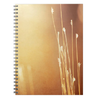 Brown colored photo notebook