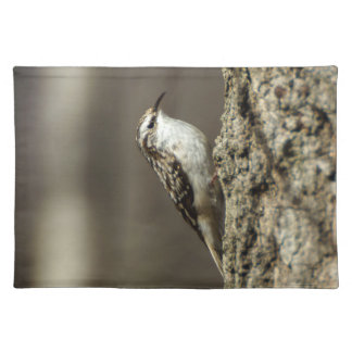 Brown Creeper Cloth Placemat
