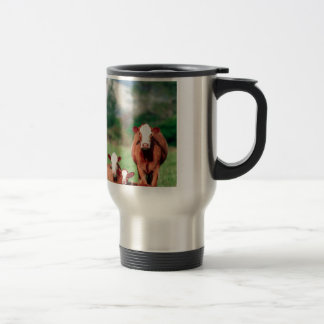 Brown hereford cattle travel mug