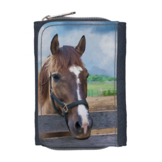 Brown Horse with Halter Wallet