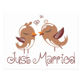 Brown Just Married Lovebirds Wedding Announcement Postcard