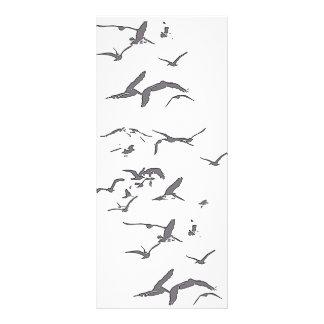 Brown Pelican Birds Wildlife Animals Rack Card Template