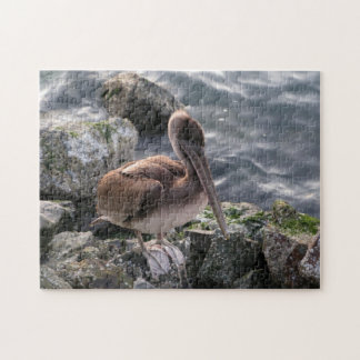Brown Pelican on the Rocks Large Jigsaw Puzzle