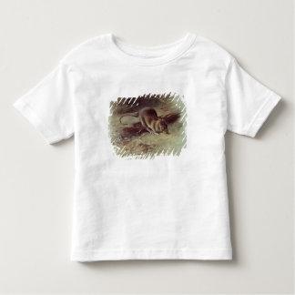 Brown Rat  1918 Toddler T-Shirt