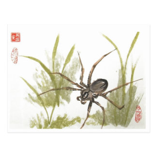 Brown Recluse Spider on White Postcard