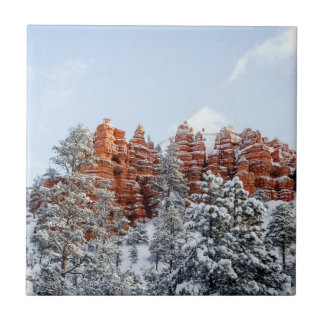Bryce Canyon Small Square Tile