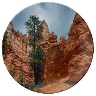 Bryce Point   Bryce Canyon Utah Plate