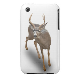 BUCK STOPS HERE iPhone 3 CASES