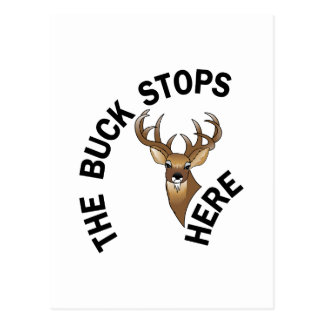 Buck Stops Here Postcard