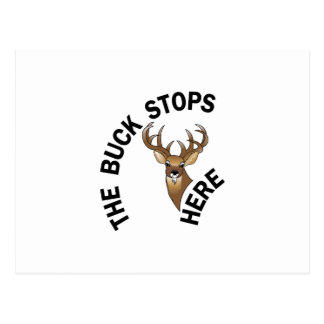Buck Stops Here Postcard