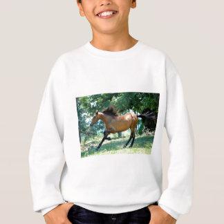 Buckskin Morgan Horse Sweatshirt