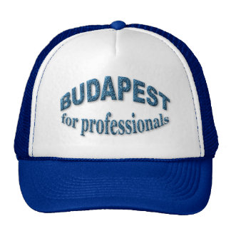 Budapest for Professionals Cap