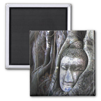 Buddha And The Tree Buddhism Thailand Photography Square Magnet