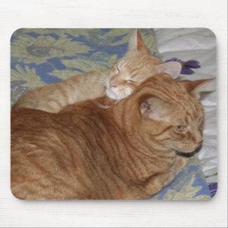 Buddies 2 mouse pad